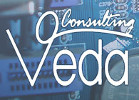 Veda Consulting